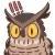 :owl002: