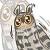 :owl015: