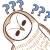 :owl034: