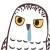 :owl045: